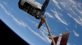 Частный космический корабль доставил на МКС бабла и мышей