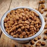 Главные критерии выбора сухого корма для собак.