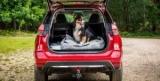 Nissan адаптировал кроссовер для собак